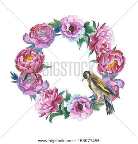 Wildflower peony flower wreath in a watercolor style isolated. Aquarelle wild flower for background, texture, wrapper pattern, frame or border.