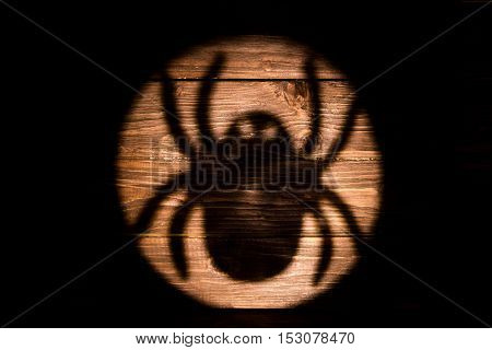 Big Spider Shadow On The Wooden Background