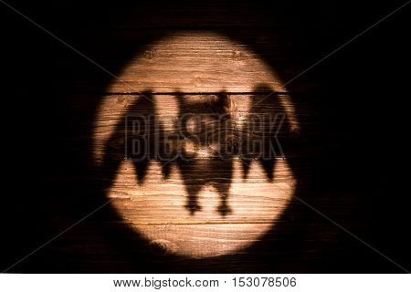 Silhouettes Of Bat Right On Wooden Background For Halloween.