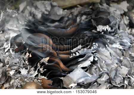 The process of burning paper. A stack of burnt paper with smoke and ash. Close-up.