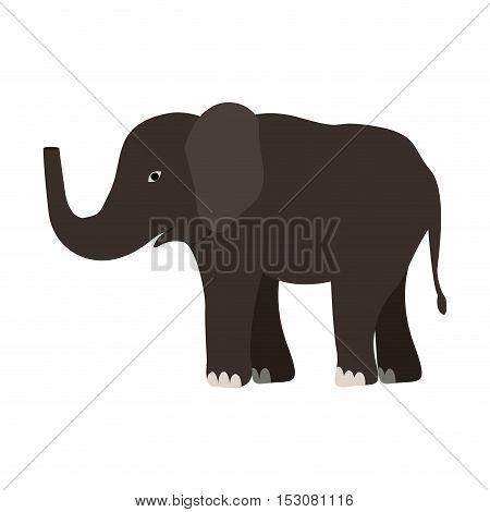 elephant jungle and wildlife animal icon over white background. vector illustration