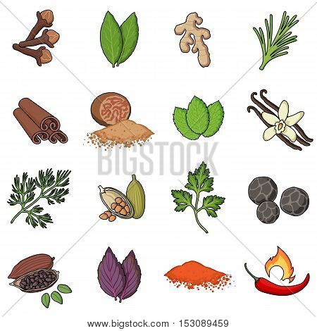 Herb and spices set icons in cartoon style. Big collection herb and spices vector symbol stock