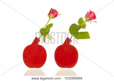 Two roses in red modern vases isolated over white background