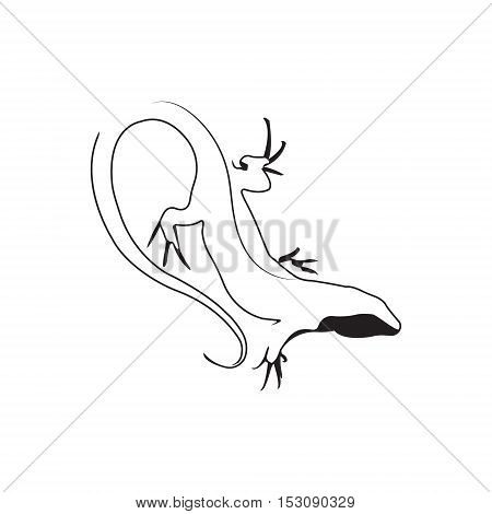 Lizard logo. Silhouette vector symbol of lizard for design company's logo, tattoo, visit card, etc. Monochrome sign of animal.