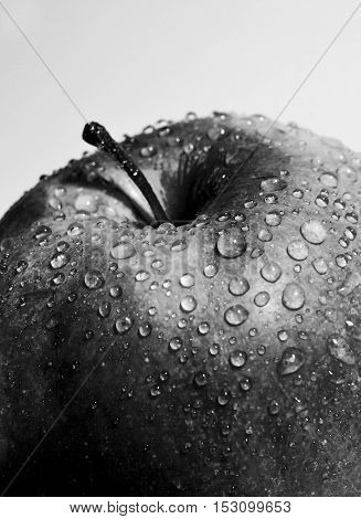 Juicy Red Apple With Drops Close-up Black And White