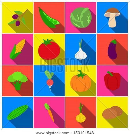 Vegetables set icons in flat style. Big collection vegetables vector symbol stock