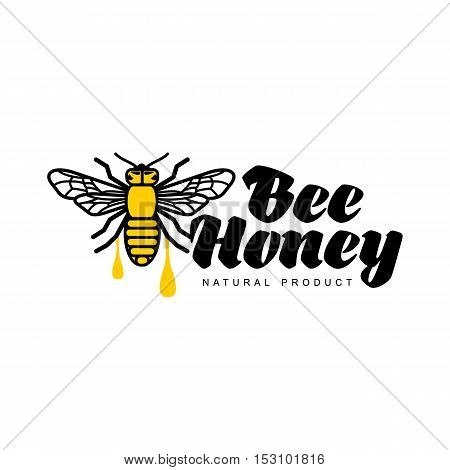 Bee, honey, apiary logo, sketch style vector illustrations isolated on white background. Hand-drawn honey bee logo for honey products, labels, bee farms and apiaries
