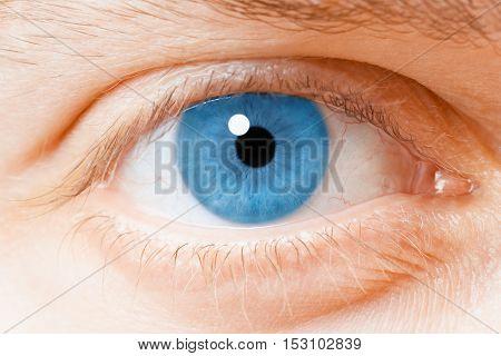 blue human eye close-up looking at you