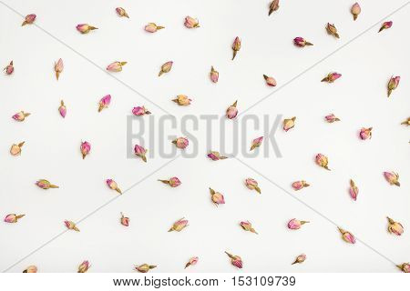 Many Rose Flower Buds On White Paper Background