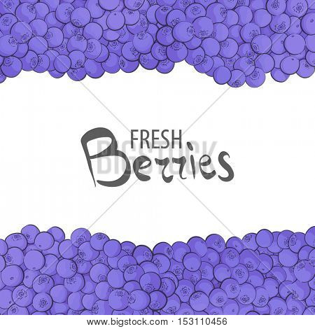 Fresh blueberries for a delicious dinner