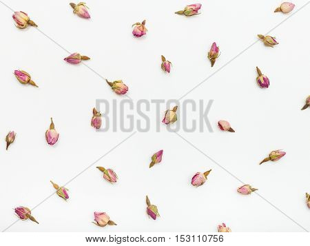 Pink Rose Flower Buds On White Textured Paper