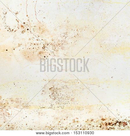 Mold Stains On The Wall Of The Room