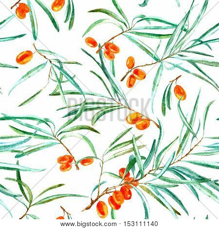 floral seamless pattern with sea buckthorn and branches.watercolor hand drawn illustration.white background.