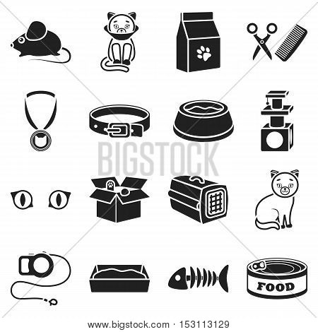 Cat equipment set icons in black style. Big collection cat equipment vector symbol stock