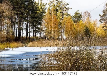 The Beginning Of The Fast Ice Of The Ob River In Siberia