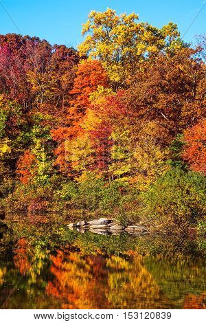 Brilliant Fall colors reflect on George Lake in Schooly's Mountain Park in Morris County NJ.