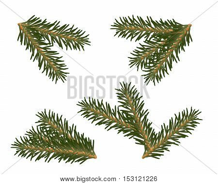 A set of Christmas tree branches for decorating
