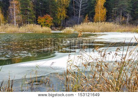 Autumn Landscape With First Ice On The River. Siberia, River Ob