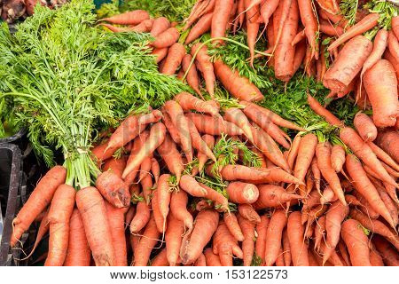 Fresh Carrots In The Grocery Store
