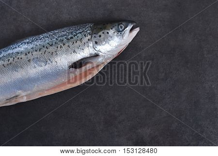 Fresh raw salmon on a black background. Top view.