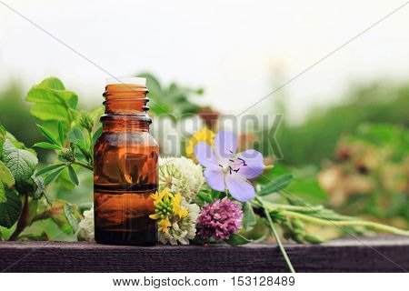 Herbal aroma oil bottle with various drugplant flowers, wooden surface, nature background in blur. Soft focus. Pure natural beauty care.