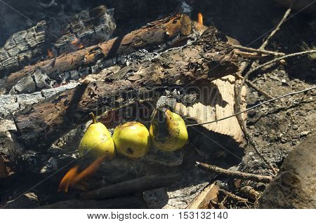 Sweet pears baked in a camp fire. Selective focus