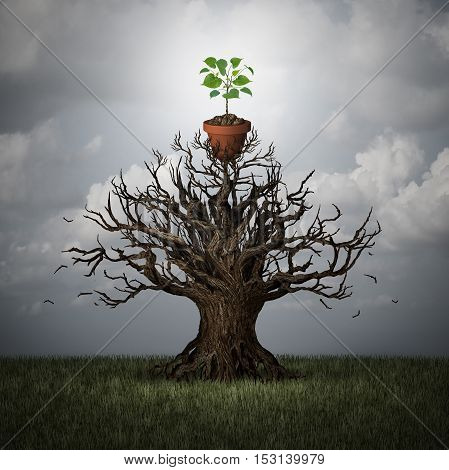 Support the future concept and foundation and trust symbol as an old tree lifting up a potted young plant as a hope for new business or life metaphor with 3D illustration elements.