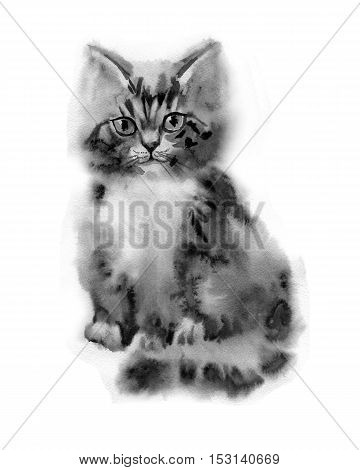 Watercolor funny ginger little fluffy kitten isolated