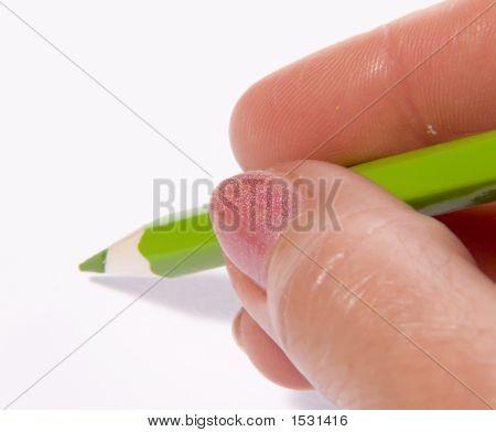 Color Pencil In A Hand