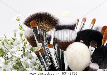 Makeup brushes set with flowers. Chickweed. White background.