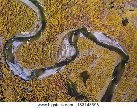A river winds its way through the fall foliage in Wyoming.