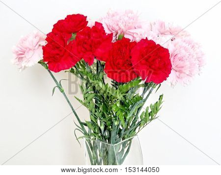 Bouquet of carnations on a white background in Thornhill Canada October 22 2016