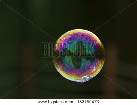 Bright soap bubble flying on the air on the darc background with reflection of buildings