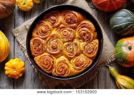 Cinnamon pumpkin dough bun rolls spicy traditional Danish baked vegan sweet autumn treat cake holiday dessert swirl bread pastry food with raw pumpkins on vintage wooden table background.