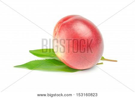 single nectarine with green leaves over white background.