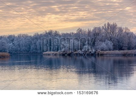 Trees covered with with hoarfrost reflected in the river, Voronezh region, Russia
