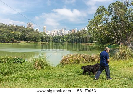 People Walk Together With Their Dog At The Aclimacao Park
