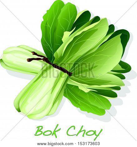 Bokchoy3