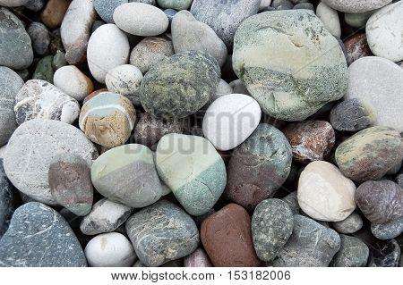 Multi-colored marine pebbles on the shore of sea.