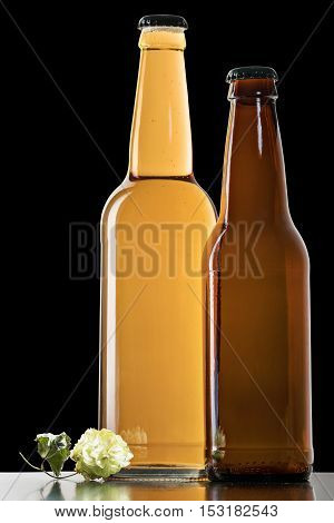 Large and small closed beer bottles with lying next a sprig of hops on a black background