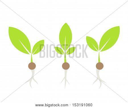 Three little plants flat design symbolic illustration