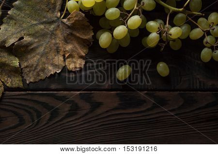 Bunch of white grapes, dry leaves on the dark wooden surface. Top view