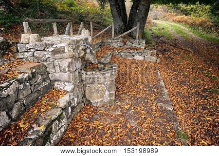 stone fountain spring water and autumnal leaves in Nebrodi Park, Sicily