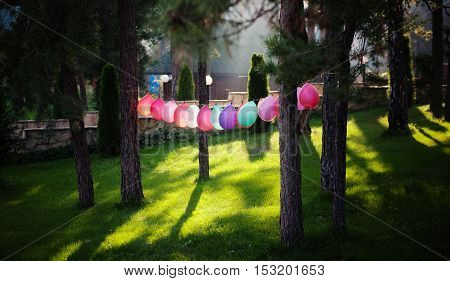 Picture of festive balloons outdoors. Many balloons of different colours represented in forest for festive atmosphere.