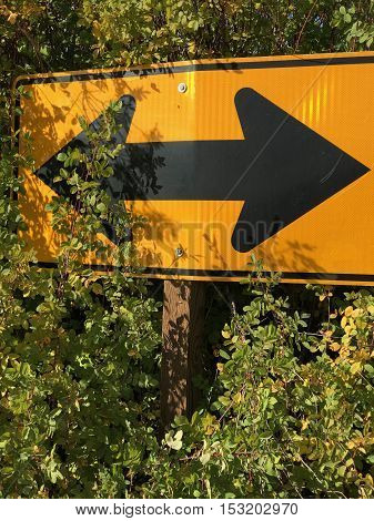 A directional road sign being swallowed up by fall bushes.