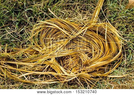 A yellow straw in shape of a heart on the grass
