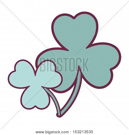 green  clover plant. irish lucky symbol over white background. vector illustration