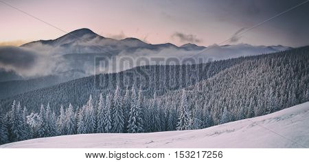 Fantastic orange evening landscape glowing by sunlight. Dramatic wintry scene with snowy trees. Gorgany ridge, Carpathians, Ukraine, Europe. Toned like Instagram filter