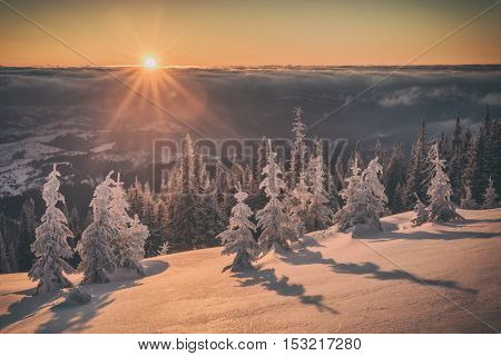 Fantastic orange evening landscape glowing by sunlight. Dramatic wintry scene with snowy trees. Kukul ridge, Carpathians, Ukraine, Europe. Toned like Instagram filter