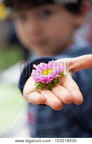 Unrecognizable boy offers flower with hand open